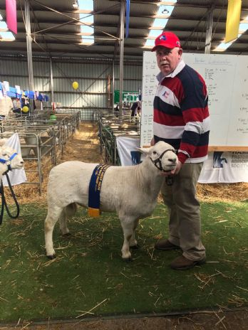 SHEEPVENTION_2019_HR.JPG