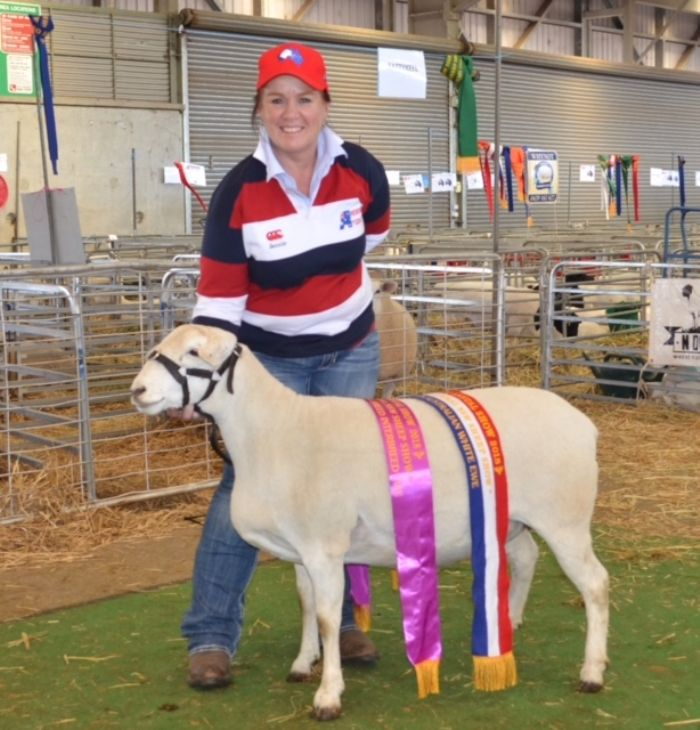 NSW_SHEEP_SHOW_-_MAY_2018_1_HR.JPG